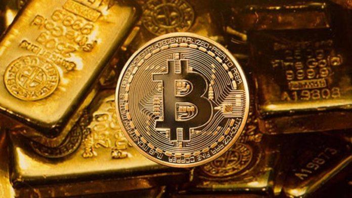 Bitcoin gold fork exclusive qa with oscar lafarga cto of bitcoin gold fork exclusive qa with oscar lafarga cto of setocean part 2 ccuart Choice Image